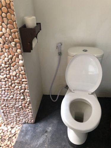 douchette wc orientale japonaise
